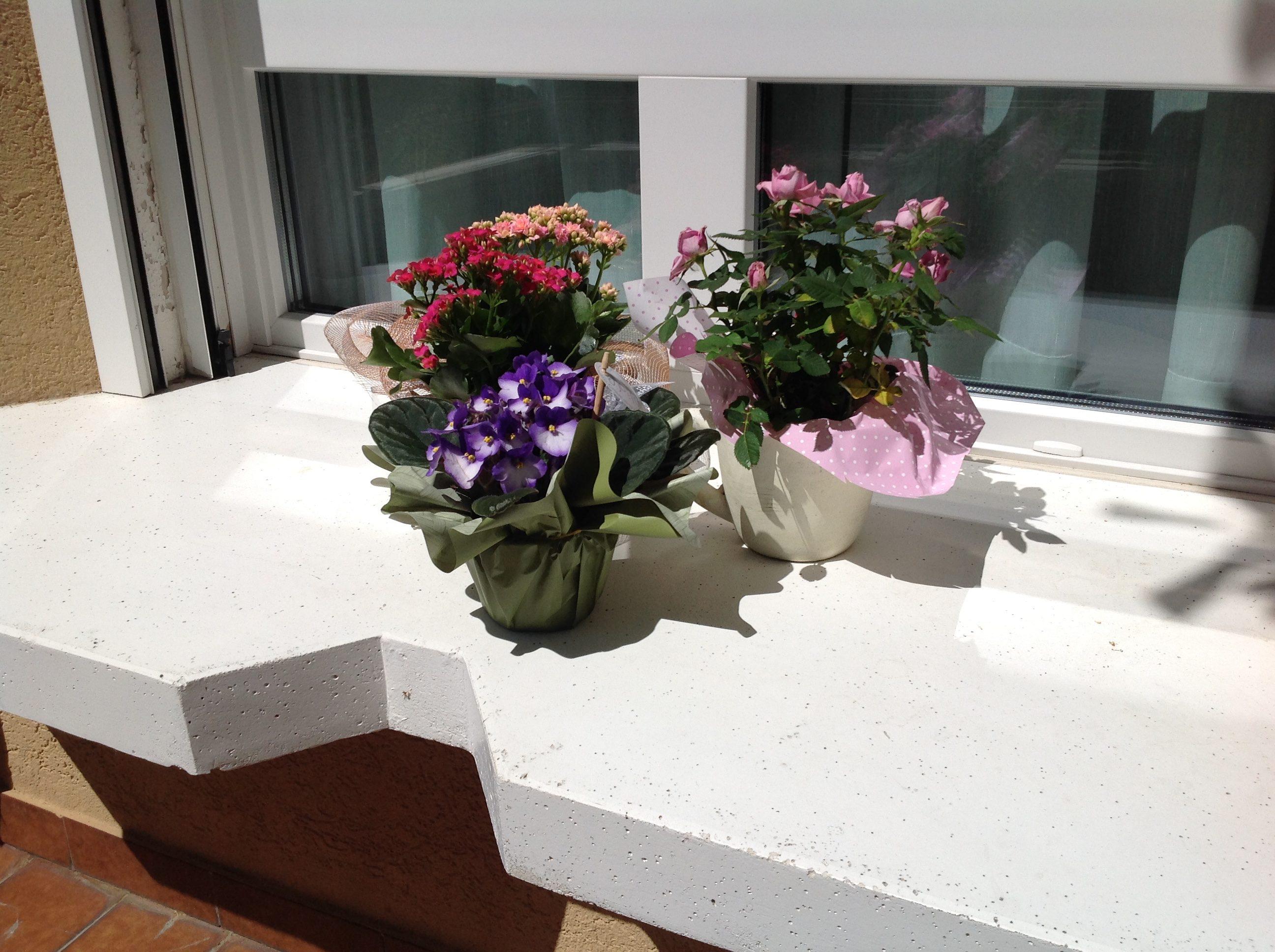 Vita-in-ospedale-fiori